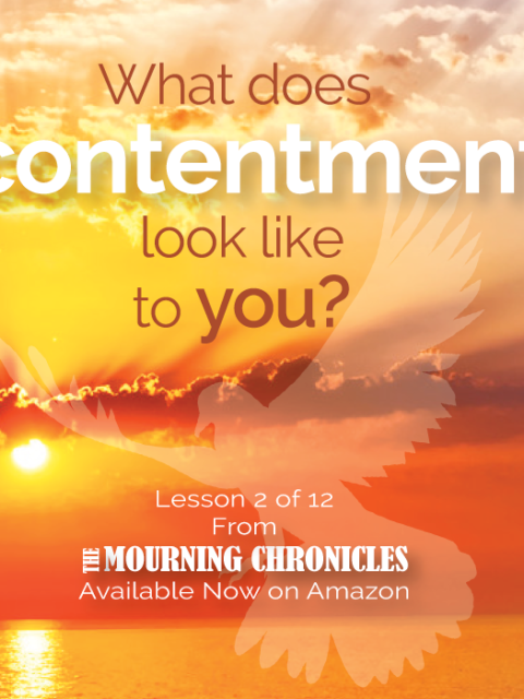 The Mourning Chronicles - Lesson 2 by Roz Swartz Williams