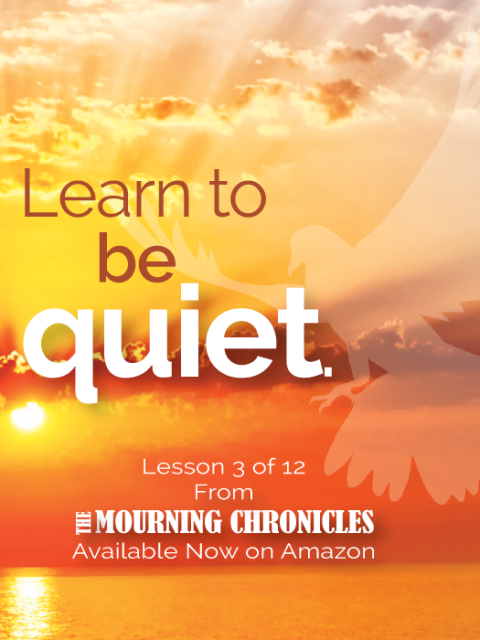 The Mourning Chronicles - Lesson 3 by Roz Swartz Williams