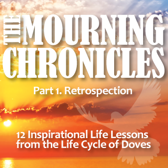 The Mourning Chronicles Book Cover