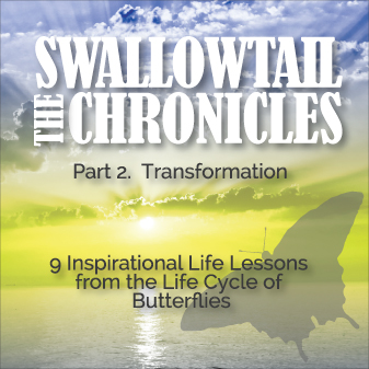 The Swallowtail Chronicles Book Cover